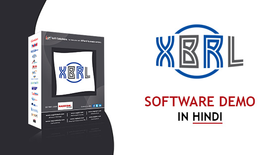 Gen XBRL Software Demo Hindi