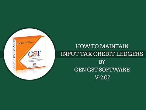 Input Tax Credit Ledgers Video